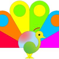 Rainbow Peacock - Der Regenbogen Pfau